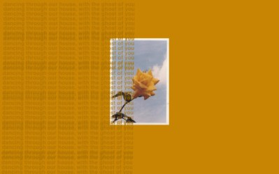 aesthetic desktop wallpapers backgrounds pc macbook yellow fondos laptop computer asthetic 5sos pantalla lockscreen fondo hd summer orange youngblood lockscreens