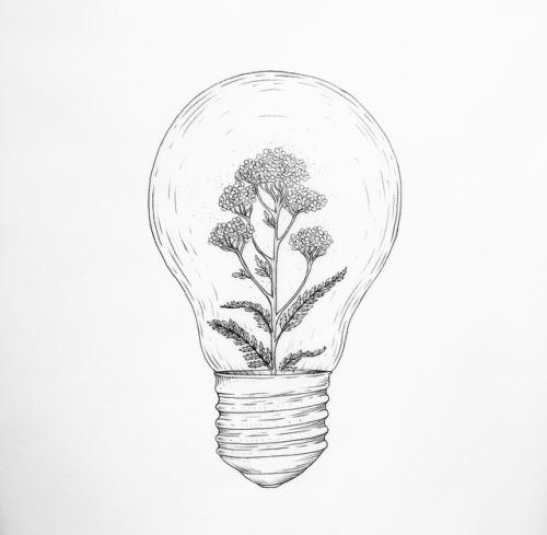 bulb drawing Tumblr