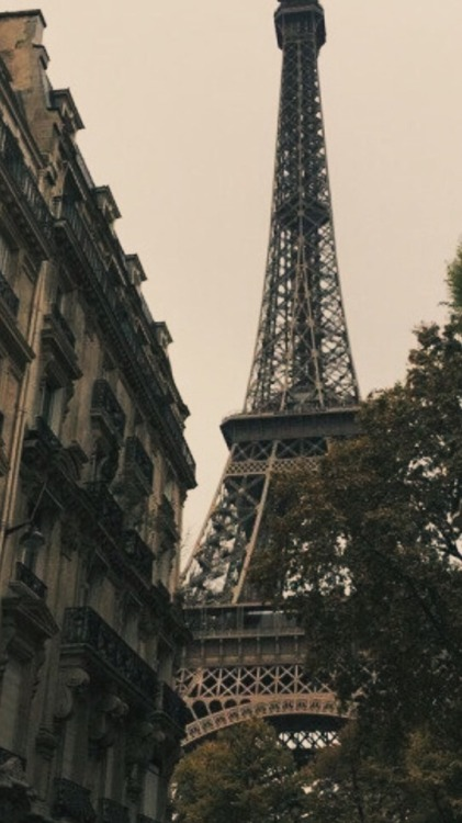 Fall Leaves Iphone Wallpaper Eiffel Tower Wallpaper Tumblr
