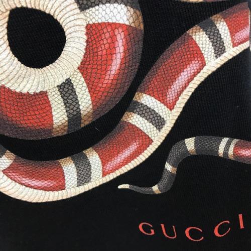 Supreme Girl Iphone Wallpaper Snake On Tumblr