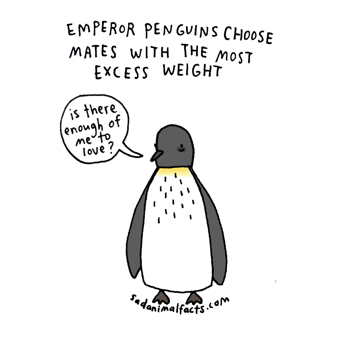 Happy World Penguin Day From Today S Sad Animal
