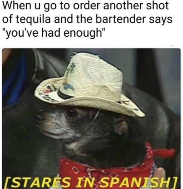 Buenos Dias Amigos Humor