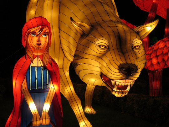 Chinese lanterns at Longleat's Festival of Light in the shape of Little Red Riding Hood and the Big Bad Wolf.