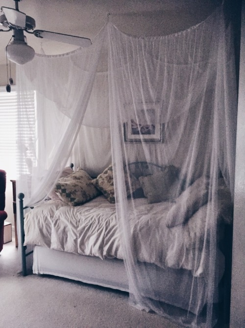 canopy bed  Tumblr