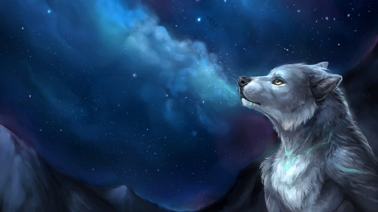 Cool Furry Wallpaper WallpaperSafari Source Backgrounds Newwallpapers Org