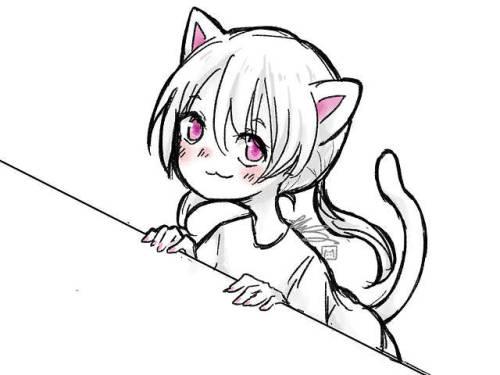 Bongo Cat 3