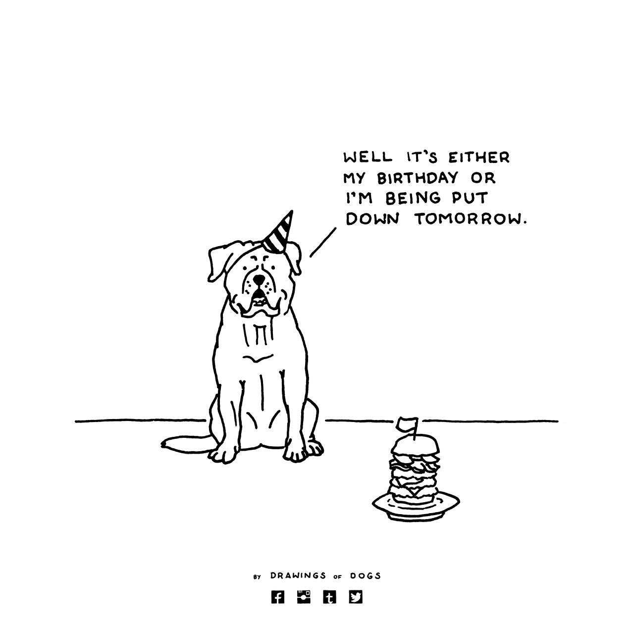 Tastefully Offensive On Tumblr Gave My Dog A Burger