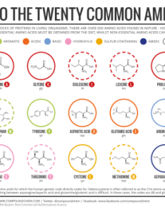 knowing the amino acids also tumblr rh