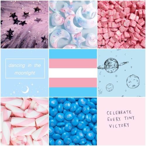 transgender pride on Tumblr