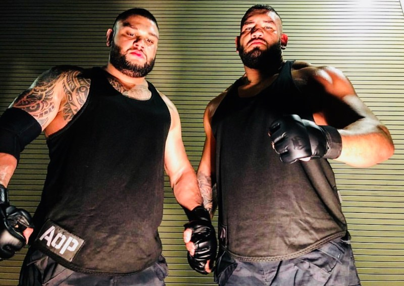 Image result for authors of pain