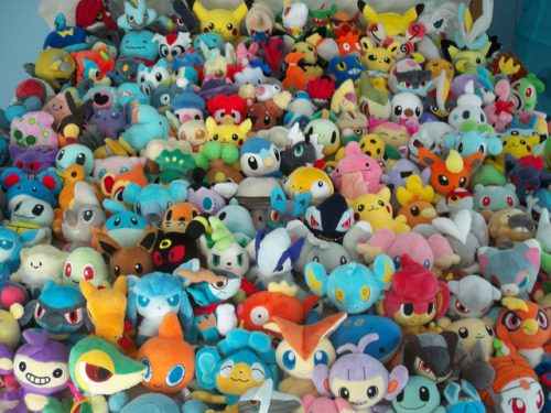 Pokemon Stuffies Tumblr