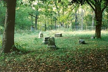 Our spooky world most spooky cemetery 2017 bachelors grove ufo our spooky world most spooky cemetery 2017 bachelors grove sciox Image collections
