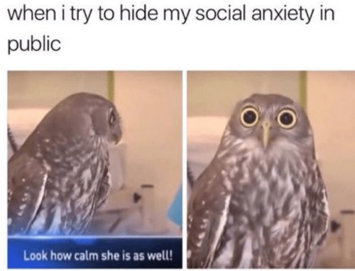 Image result for anxiety memes
