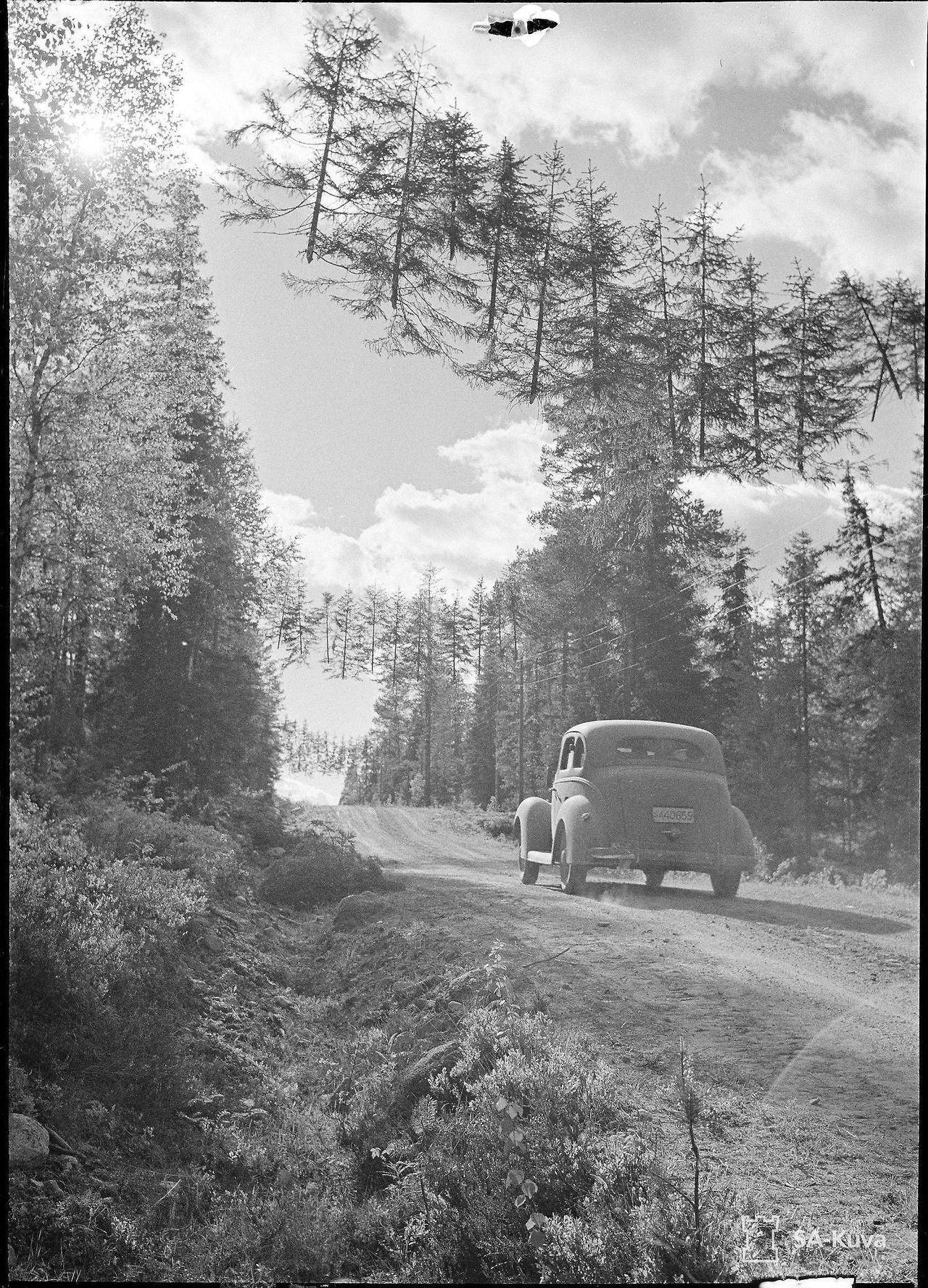 A camouflaged road in Finland during WW2 – History