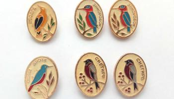Vintage birds pins: blue thrush and great crested grebe (x