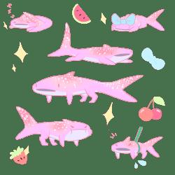 transparent whale shark pastel
