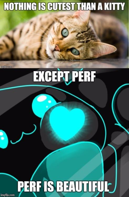 perf kitty  Tumblr