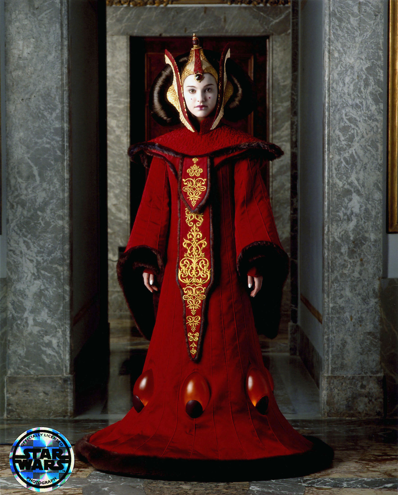 Star Wars Fit for a Queen Queen Amidalas Throne Room