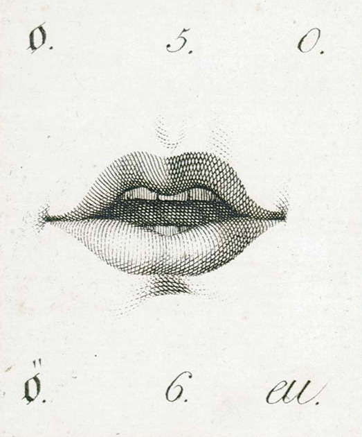Design is fine. — Position of the lips, education manual