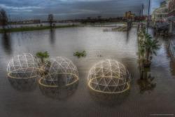 #netherlands #venlo #high_water #venloverwelkomt #venloverrast #omroepvenlo #l1mburg #delimburger http://ift.tt/2m4KmW5