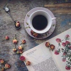 coffee books aesthetic tea flowers standing still myend ismybeginning stardust reblog favim camila postado
