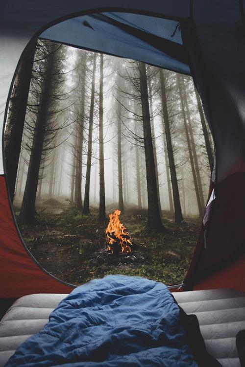 Fall Vibes Wallpaper Campfire Tumblr
