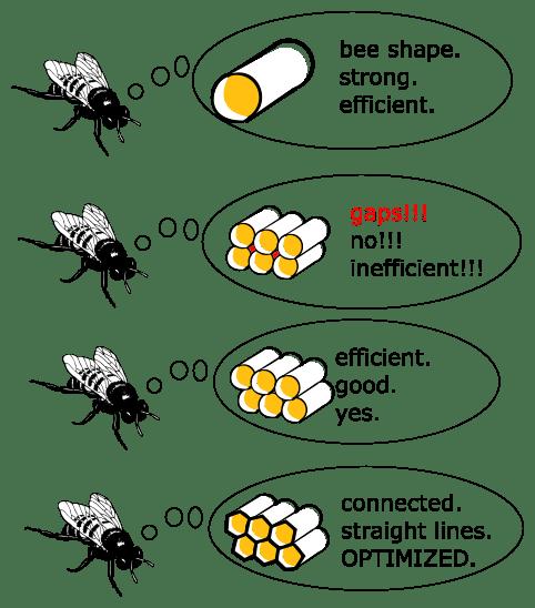 Frick Yeah Biology Memes!