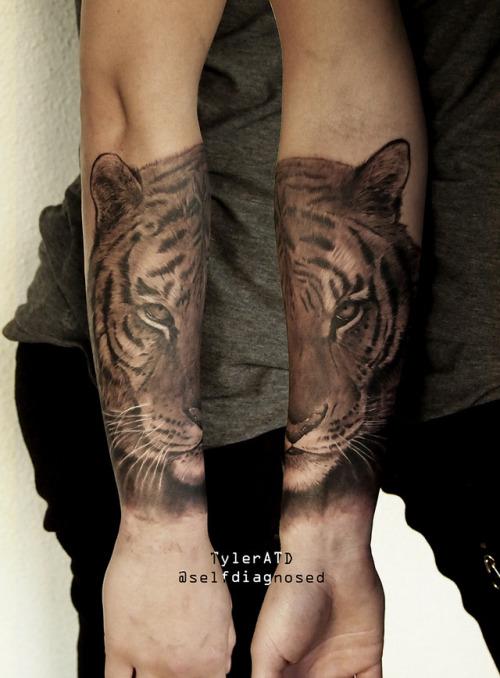 tumblr oxb8e8C9pN1qzabkfo1 500 - Tiger forearm tattoo by Tyler ATD Whistler, Canada insta:...