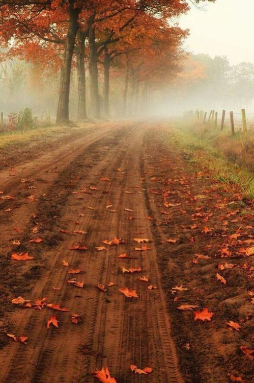 Wallpaper Country Girl Country Life On Tumblr