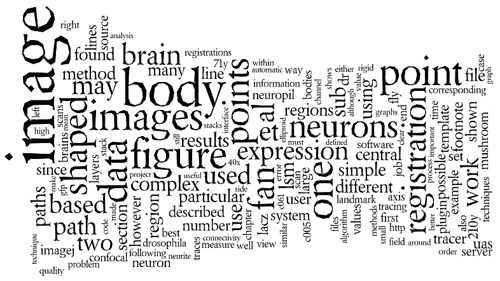 Size matters: brain processes 'big' words faster...