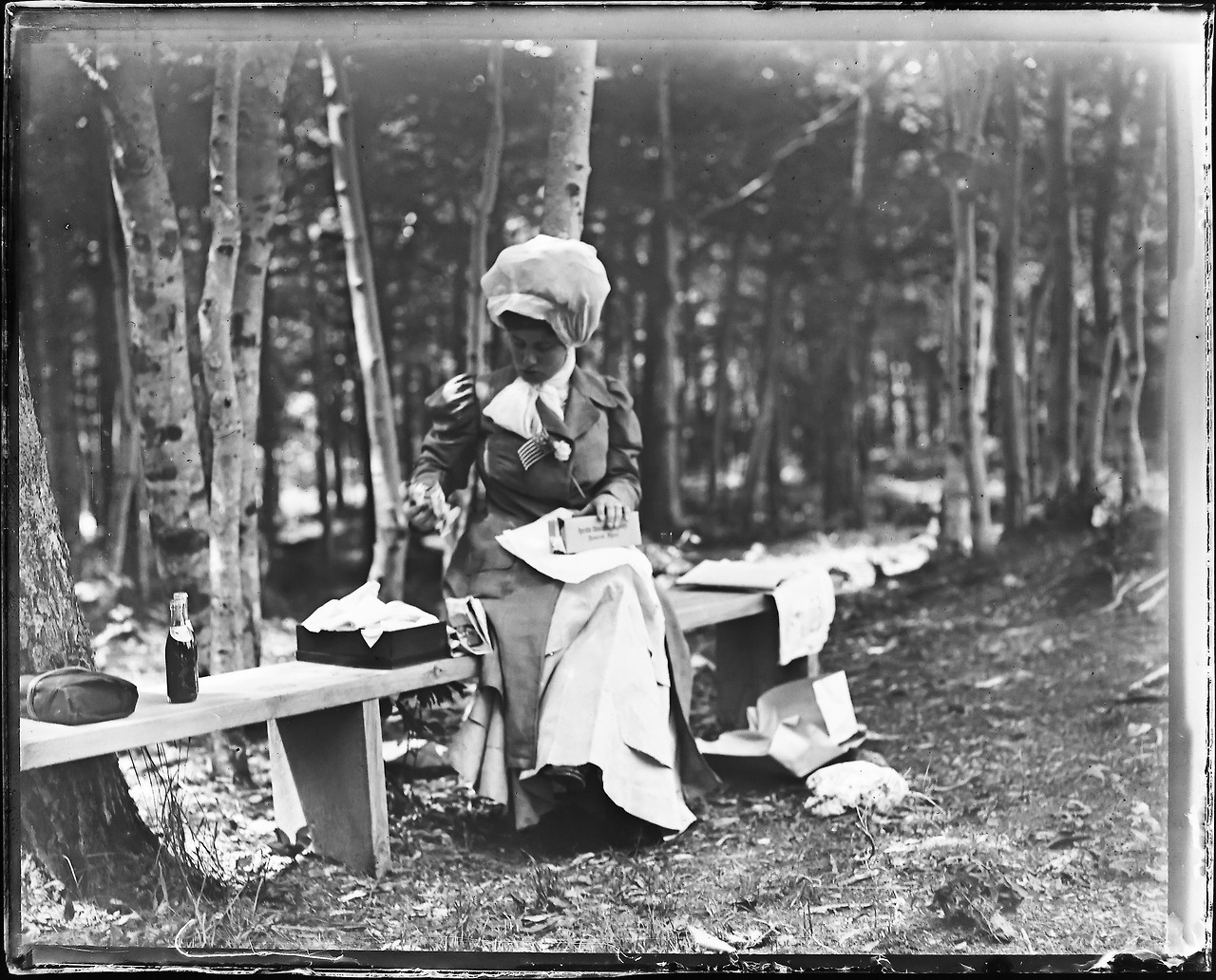 Lunch in the park, ca. 1890s.
