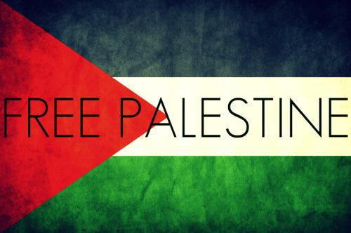 Toda solidariedade ao povo palestino!