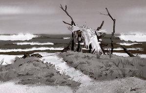 nomadsdraw:(via Playa Guillones by ~PiratoLoco on deviantART)Artist: Craig Harris