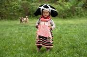hmong thrills longhorn