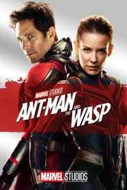 แอนท์-แมน และ เดอะ วอสพ์ (2018) Ant Man and The Wasp