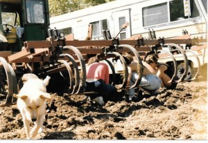 The John Deere, the Triple E, the dog and gang changing the shears on the cuktivator