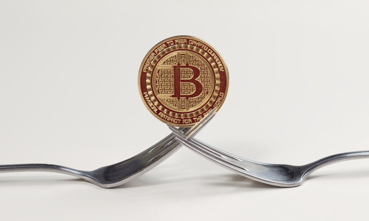 Bitcoin hard forks have now become the preferred strategy of creating offshoots to the original cryptocurrency in order to create a new coin and raise cash through the marketplace