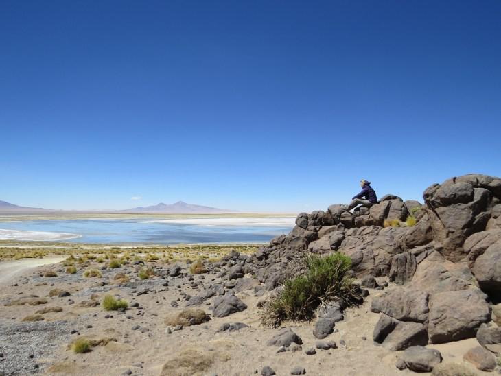 Salar de Tara - Deserto do Atacama 6
