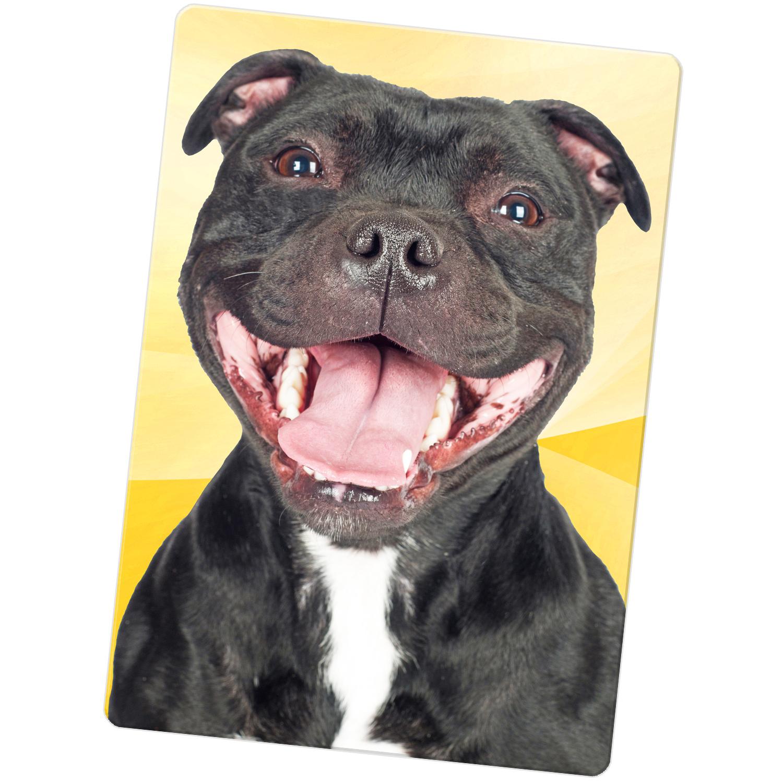 Staffordshire Bull Terrier Staffy Staff Dog Large Fridge
