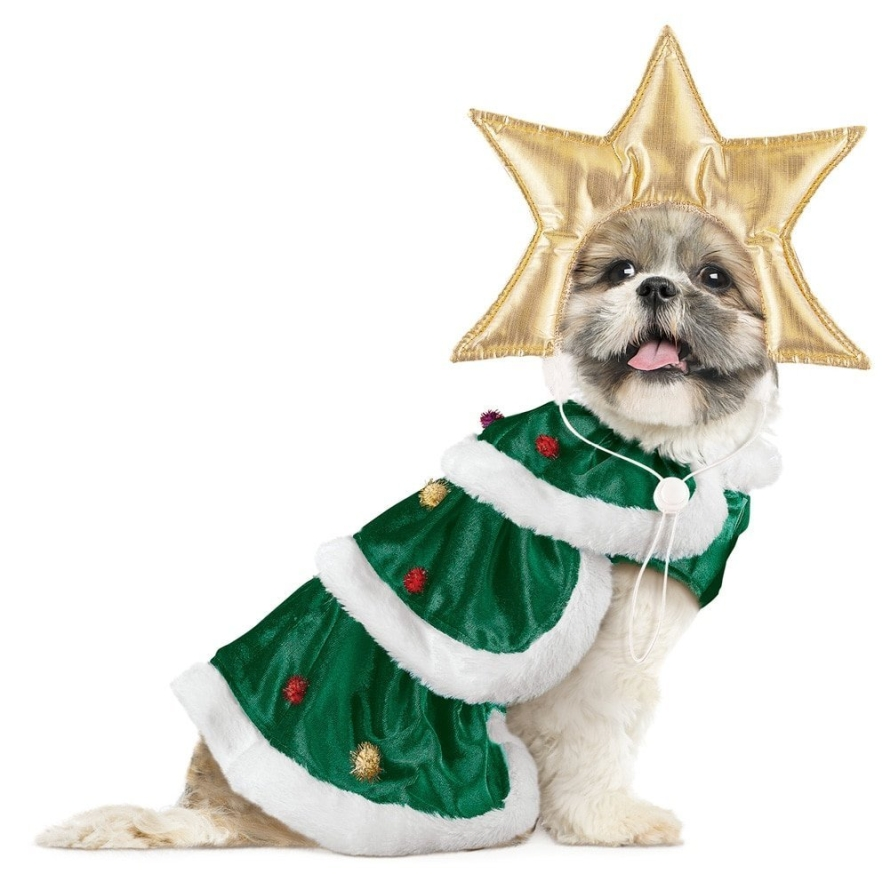 Go Dog Holiday Elf Dog Costume  Christmas