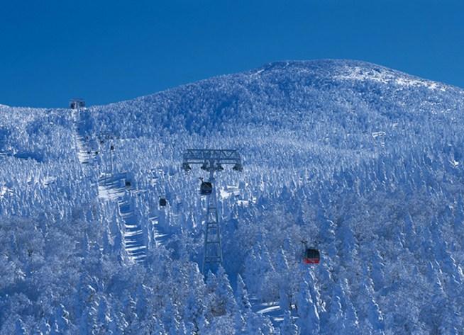 https://ja.wikipedia.org/wiki/山形蔵王温泉スキー場
