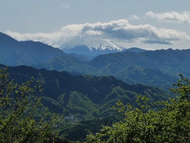https://ja.wikipedia.org/wiki/高尾山