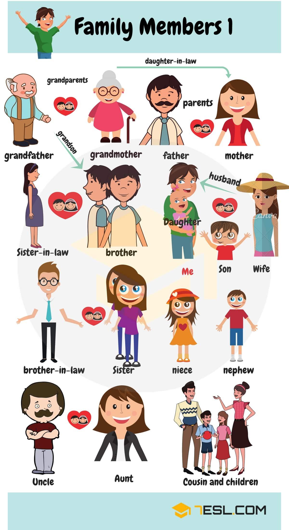 Members Of The Family Vocabulary Family Members Tree