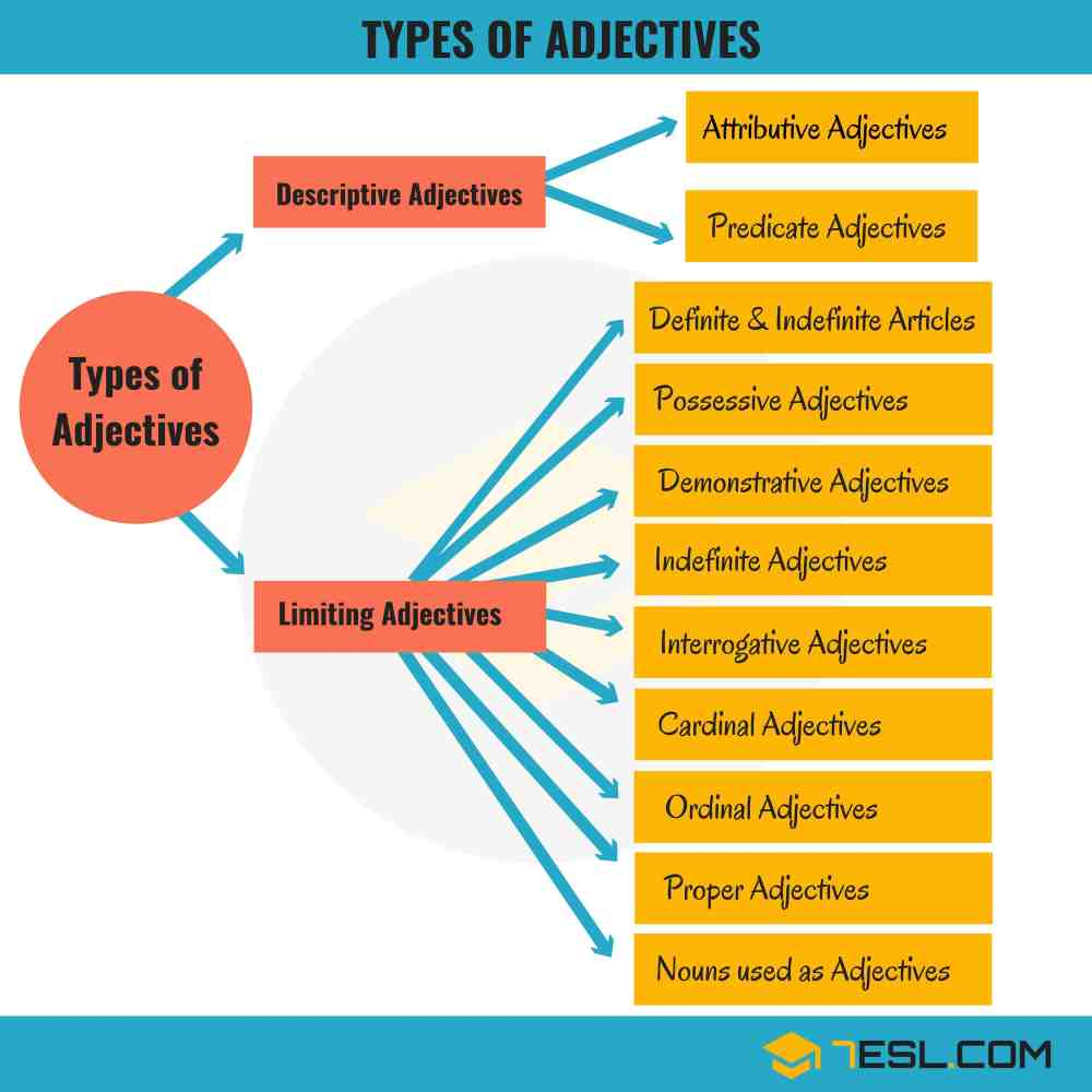 medium resolution of 11 Types of Adjectives Used in English (with Examples) • 7ESL