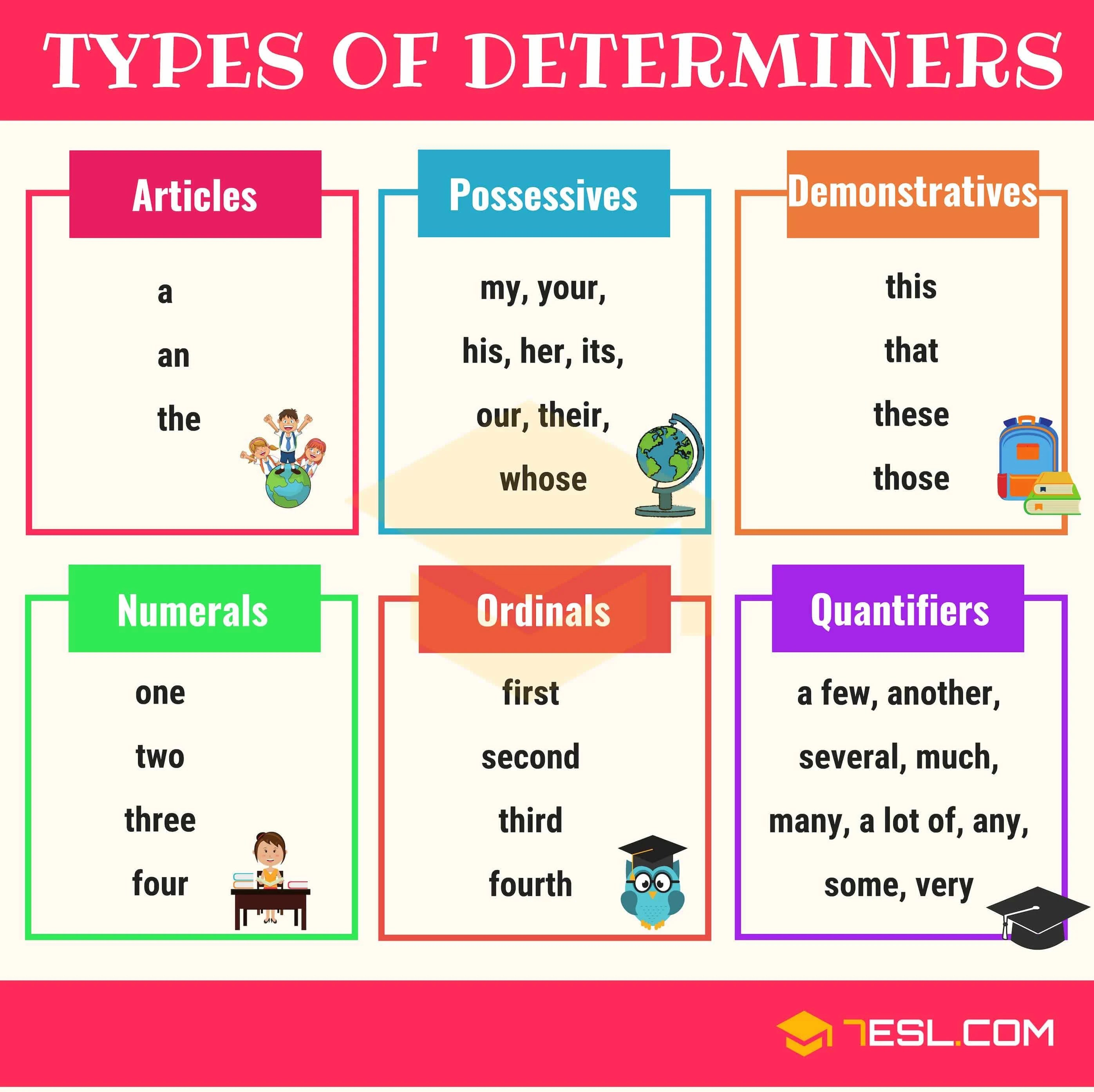 Determiners Definition Types List Amp Examples