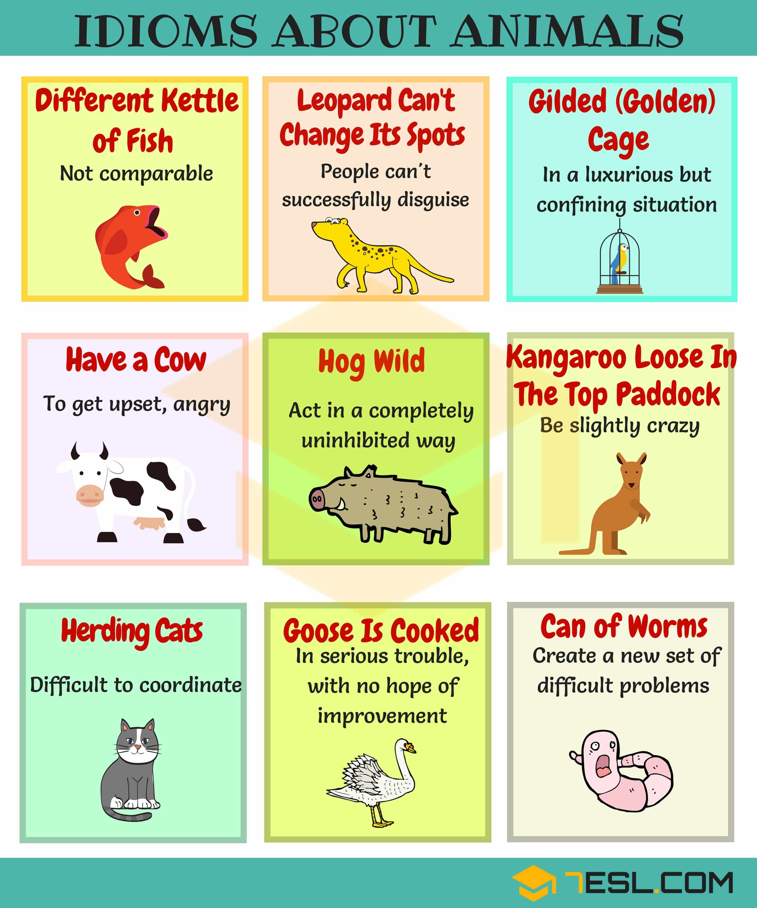 Common Nature Idioms In English With Meaning And Examples