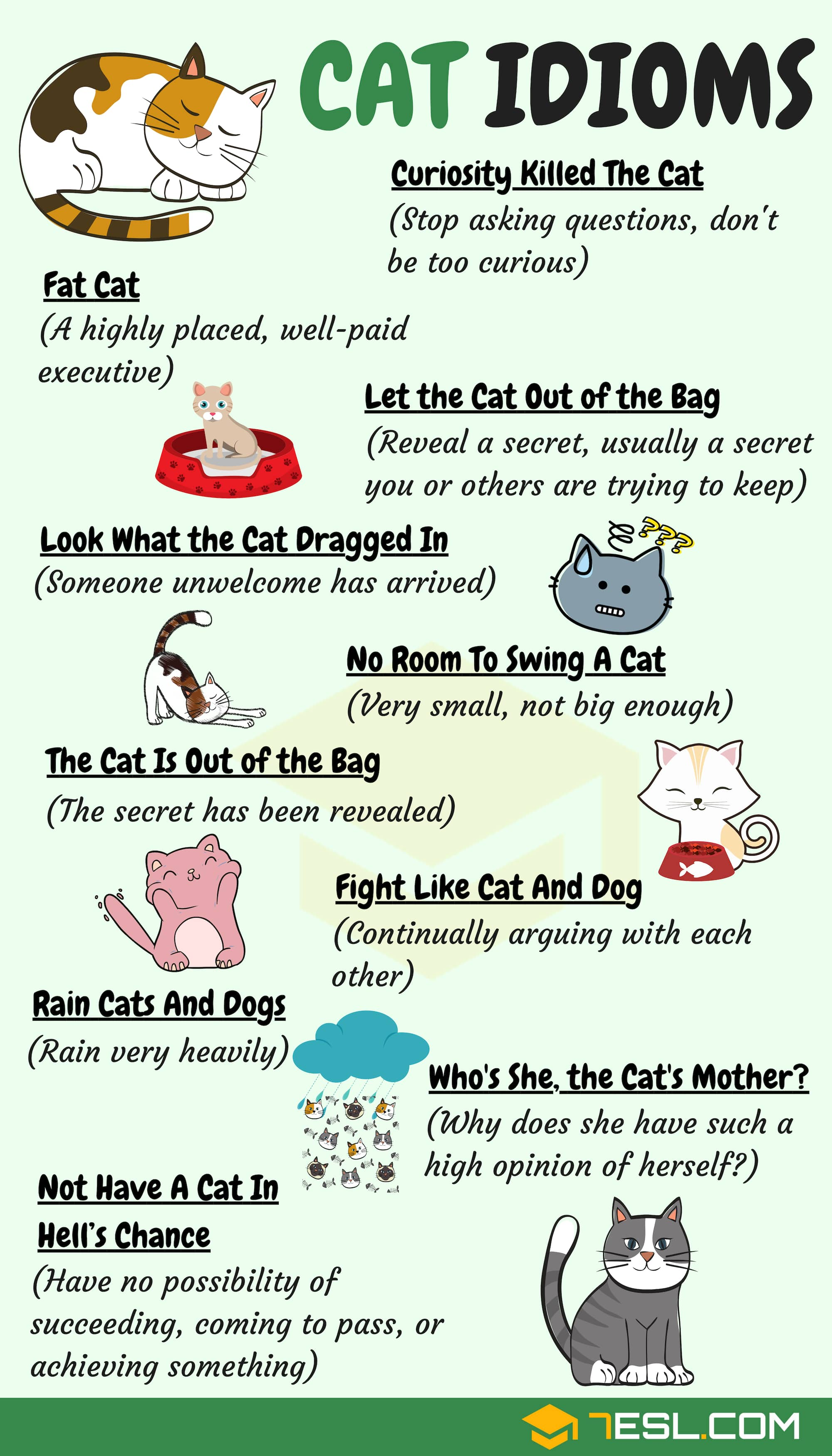 Animal Idioms: 165 Useful Animal Idioms from A-Z • 7ESL
