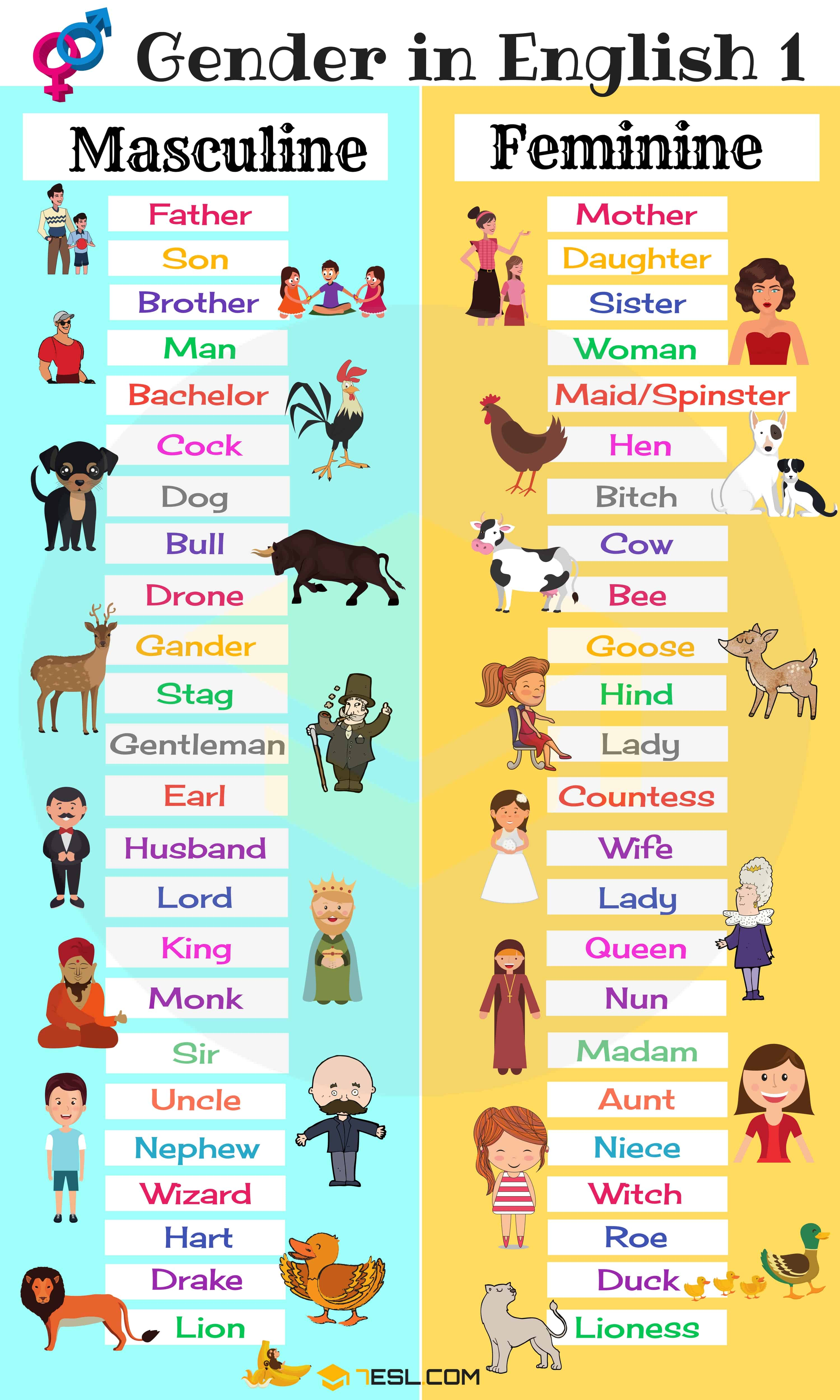 Gender Of Nouns Masculine And Feminine List In English