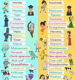 Gender of Nouns: Useful Masculine and Feminine List • 7ESL [ 4510 x 3000 Pixel ]