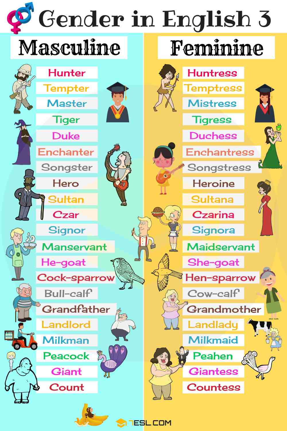medium resolution of Gender of Nouns: Useful Masculine and Feminine List • 7ESL